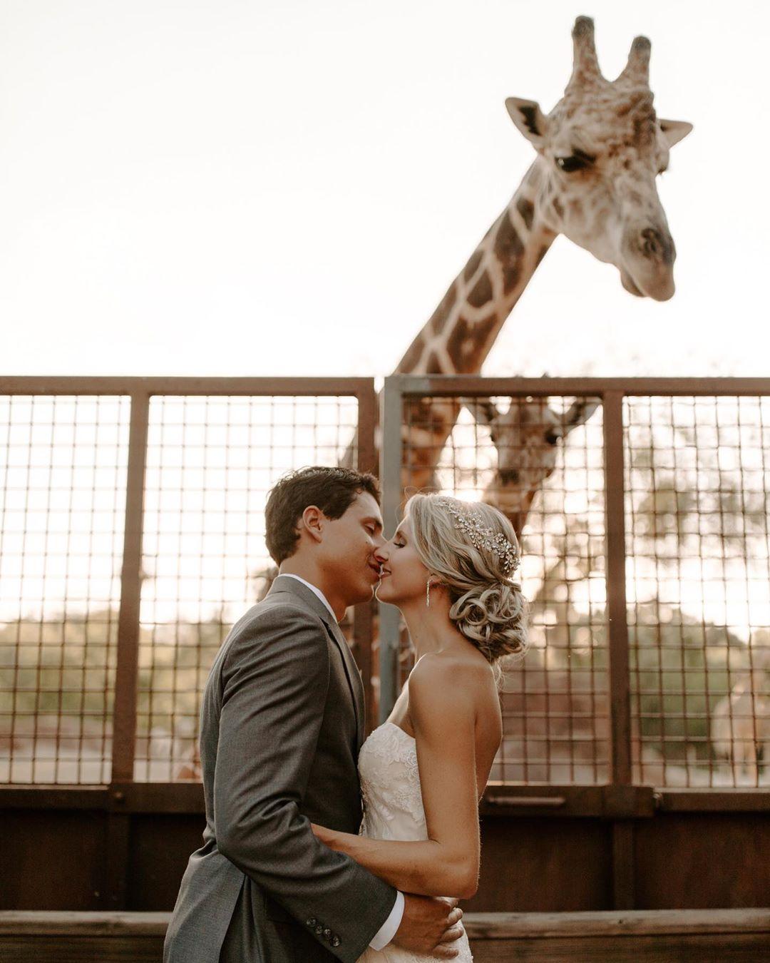 zoo wedding | unusual wedding venues